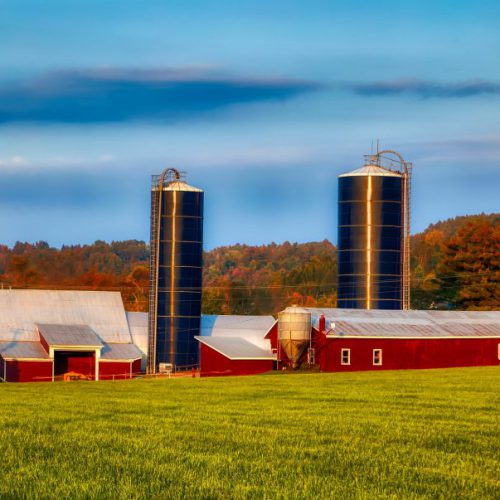 dairy-farm-4019962_1920