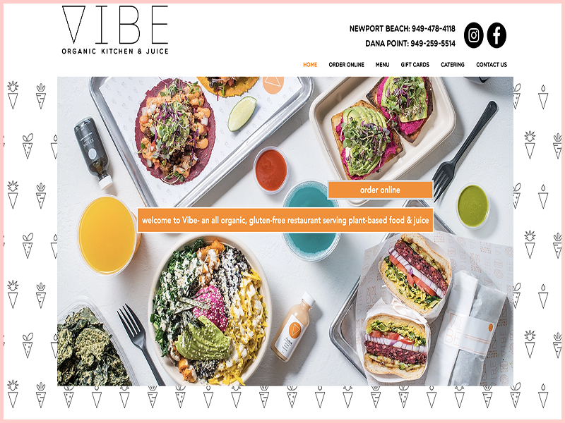 Vibe Organic Kitchen & Juice Gluten Free Traveling Toon