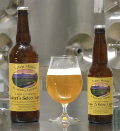 Eckert Malting & Brewing Gluten Free Beer